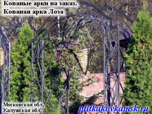 Кованая арка Лоза