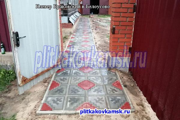 Клевер Краковский большой в Белоусово
